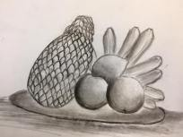 CHARCOAL DRAWING FOR PRIMARY 4: LIVE DRAWING